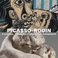 picrodin
